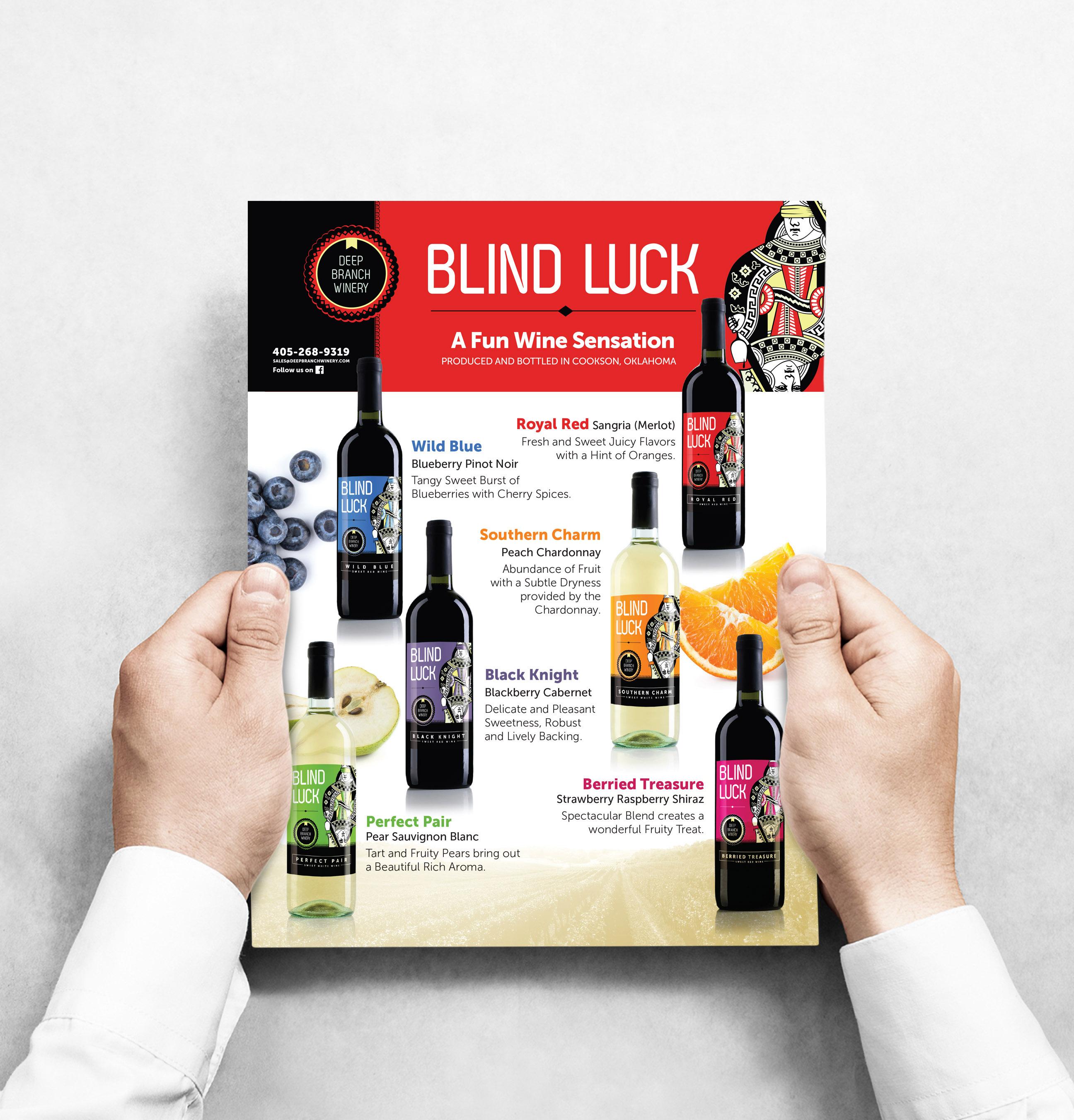 Blind Luck Flyer Sheet Design